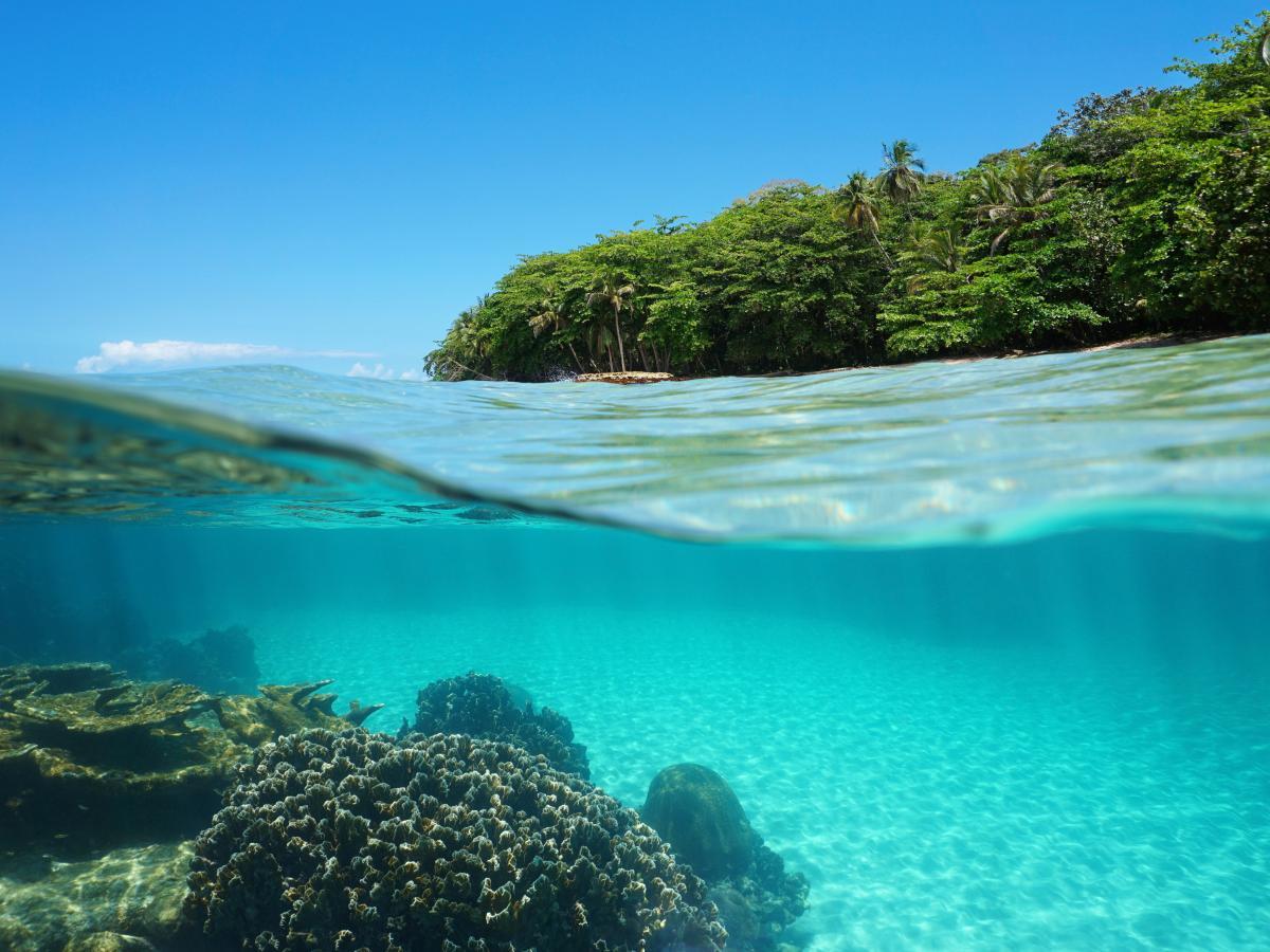 voyage-sur-mesure-costa-rica-flore