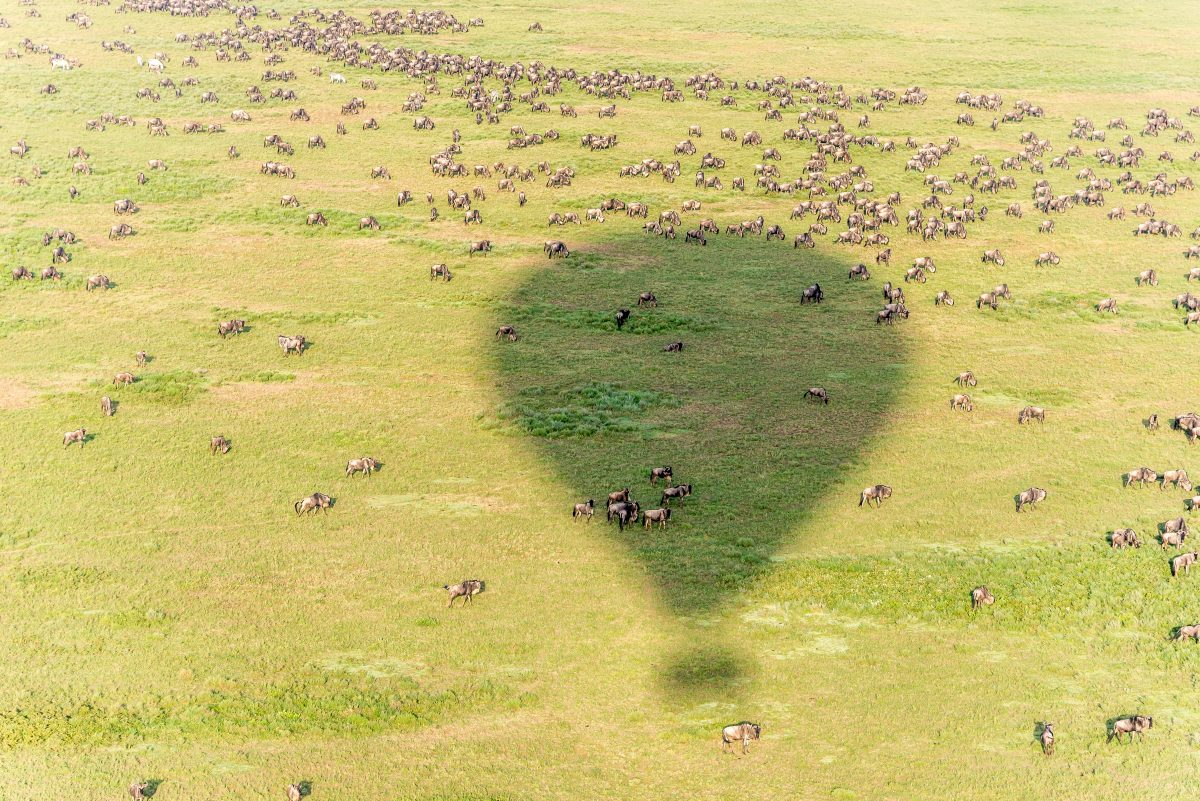 voyage-de-luxe-Tanzanie-mongolfière