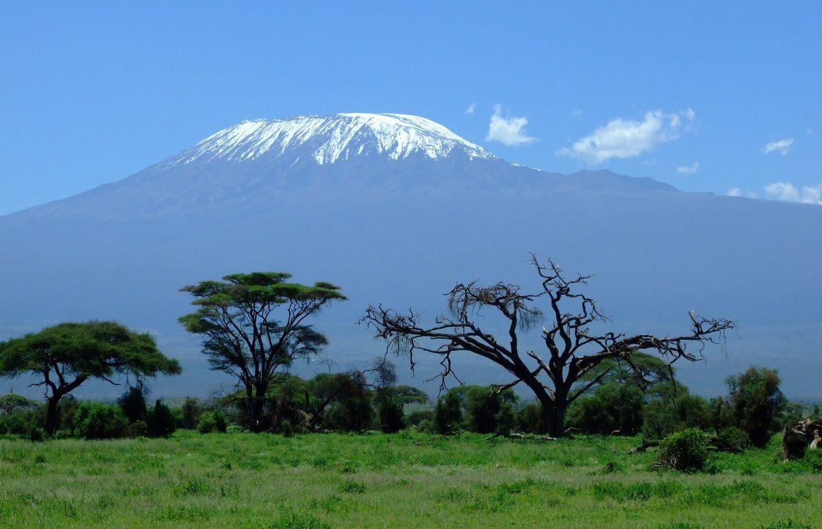 Voyage-de-luxe-Tanzanie-kilimanjaro