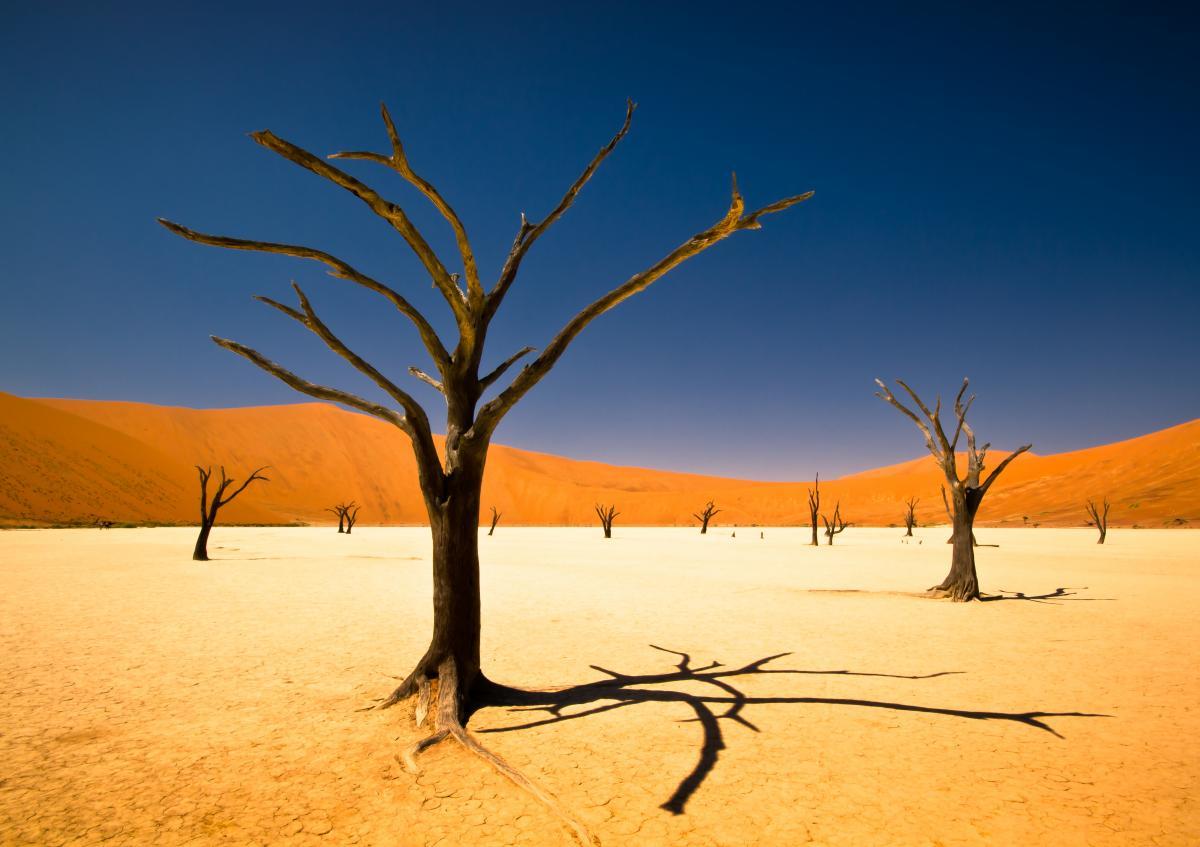 voyage-de-luxe-namibie-desert