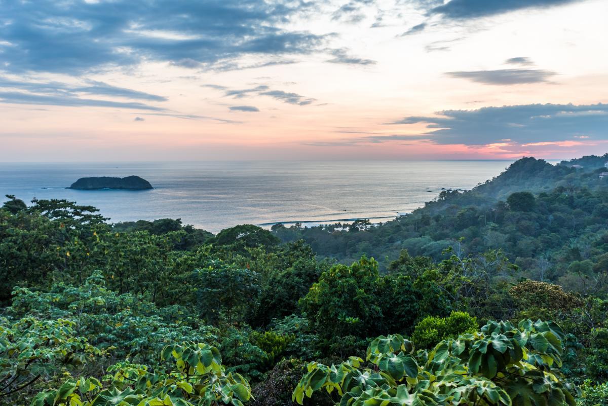 voyage-sur-mesure-costa-rica-jungle