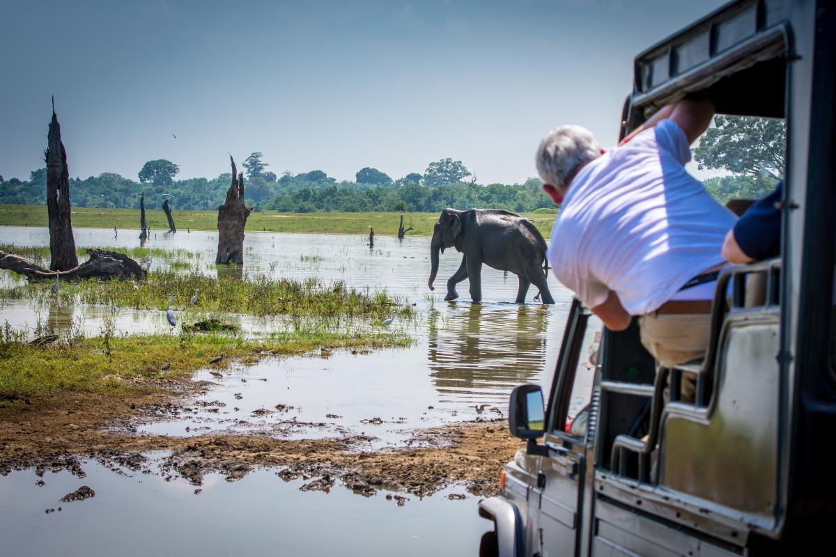 voyage-de-luxe-sri-lanka-safari