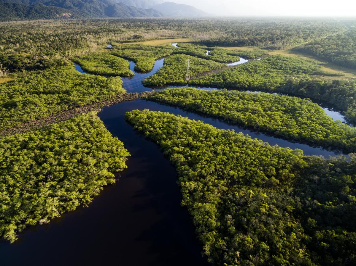 voyage-sur-mesure-au-bresil-amazonie