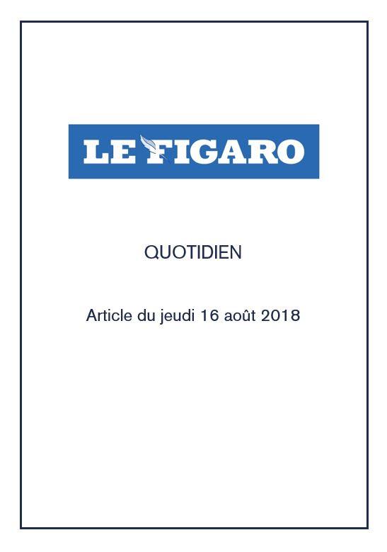 figaro-roving-bushtops